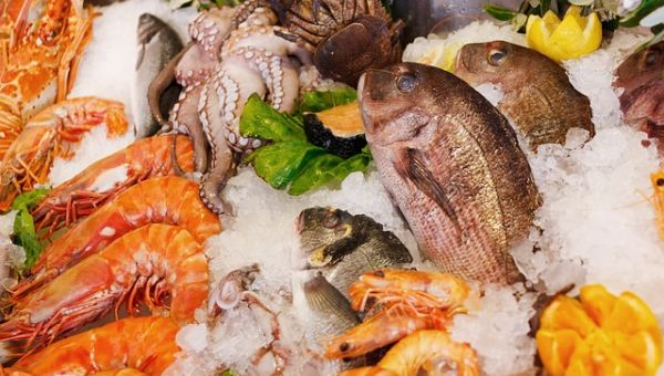 Meat and seafood, frozen food, Dried seafood and foodstuff, Leftover